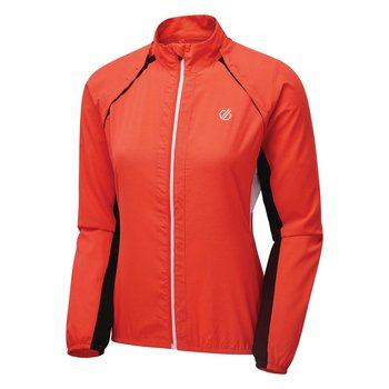 Dare2b Rebound Windshell Jacke Damen Windstopper